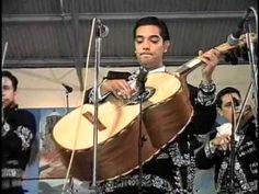 EL CANTAR DE UN GUITARRON mariachi sol de mexico