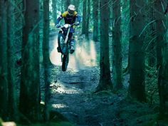 Moto Cross, Motorcycle Wallpaper, Extreme Sports, Bradley Mountain, Woody, Mountain Biking, Woodland, Trail, Bike