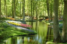 To know more about Holland Keukenhof Gardens, visit Sumally, a social network that gathers together all the wanted things in the world! Featuring over 412 other Holland items too! Beautiful Places In The World, Places Around The World, Wonderful Places, Around The Worlds, Amazing Places, Beautiful Things, Heavenly Places, Places To Travel, Places To See