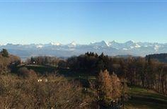 Bed & Breakfast Wildrose in Bern, Switzerland   B&B Rental