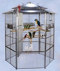 Bird Cages And Aviaries For The Style Conscious – Anima Care Diy Bird Cage, Bird Cages, Stainless Steel Bird Cage, Dog Enclosures, Melbourne, Bird Stand, Colorful Parrots, Dove Bird, Bird Aviary