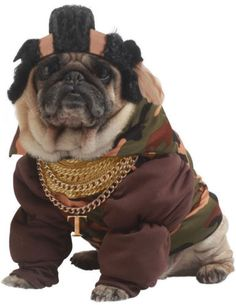 Pet-Pity-the-Fool-Dog-Mr-T-A-Team-Baracus-Ba-Fancy-Dress-Costume