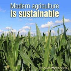 Sustainable agricult