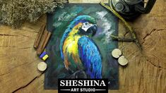 How to draw a parrot with soft pastels  Sheshina Ekaterina