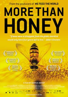 More than Honey, a film by Markus Imhoof, is a beautifully made documentary about