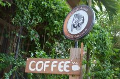 30 cafes to visit in Chiang Mai -- many have wifi?! Bonus!
