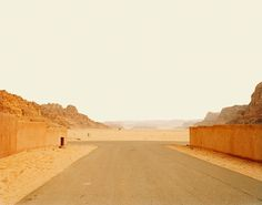 Nadav Kander - Nadav Kander — Desert XII (Camel), Jordan