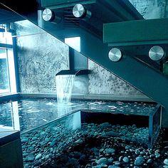 aquarium furniture wood