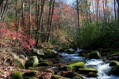 Gatlinburg Tennessee mountain stream