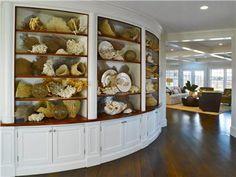 shell display WOW