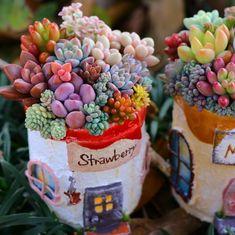 Succulent Arrangements, Cacti And Succulents, Planting Succulents, Baby Due Date, Pregnancy Announcement Cards, Succulent Wreath, Baby Shower Centerpieces, Diy Wreath, Strawberry