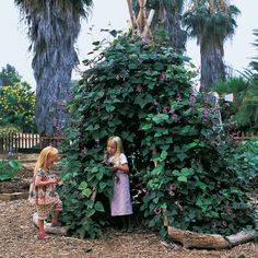 A Vine-Covered Tepee | Create your own secret hideaway