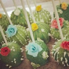 Image result for cactus cake by patrica
