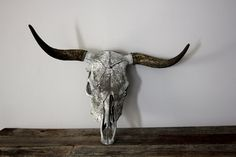 Weathered Bull Skull and Horns