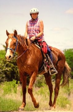 Quarter Horses in Endurance - YES! Your breed can do this (and do it very well).