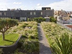 Roofgarden M Central in Sydney. By 360 Degrees.