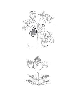 Ryn Frank is a freelance illustrator, specialising in hand drawn illustrations. Botanical Line Drawing, Botanical Drawings, Botanical Prints, Plant Illustration, Botanical Illustration, Fig Drawing, First Tattoo, Corporate Design, Illustrations