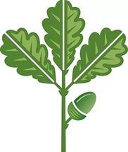 There is 28 Oak Leaves Cliparts for you Free to use Cliparts.