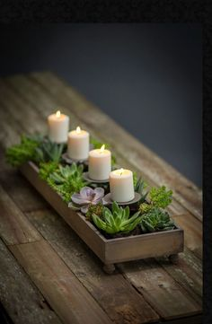 Weathered Candle and Centerpiece Planter   Table Terrain Dining Tablescapes and Holiday Table Decorations Succulent Centerpieces, Candle Centerpieces, Christmas Centerpieces, Candles, Succulent Table Decor, Graduation Centerpiece, Simple Centerpieces, Centerpiece Ideas, Dining Room Table Centerpieces