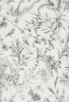 We have added som elovely new wallpaper designs by Ralph Lauren.