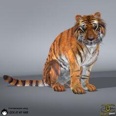 Tiger render test! Animals, Image, Animales, Animaux, Animal, Animais