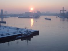 photo: Erne Buchter    The harbour of Rotterdam.