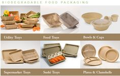 Biodegradable fast food containers Wheat straw biodegradable disposable food container-Plastic Buckets, Paper Cups, Tamper Evident Food Storage Containers Suppliers & Manufacturers, Find Packaging Industry Solutions Online
