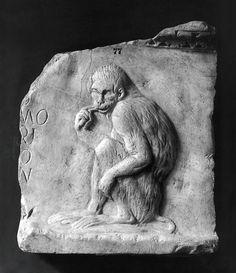 Relief med en siddende abe og en indskrift. Romersk