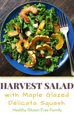 A nourishing and delicious Fall Salad. Massaged kale, roasted maple glazed delicata squash, cranberries and almonds all tossed in Citrus vinaigrette. A little sweet, a little savory, a little tangy, A LOT delicious! #glutenfree