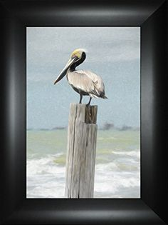 Stumped By Todd Thunstedt 24x18 Pelican Stork Ibis Island Islamorada Jimmy Buffet Jolly Roger Flag Davy Jones Locker Sailboat Regatta Key West Florida Sarasota Framed Art Print Wall Dcor Picture >>> Check out this great product.Note:It is affiliate link to Amazon.