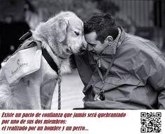 Existe un pacto de confianza que jamás será quebrantado por uno de sus dos miembros:  el realizado por un hombre y un perro..