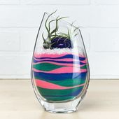 Layered Sand Art Air Plant Terrarium (Currently Unavailable - All For Garden Ferns Garden, Apollo Box, Air Plant Terrarium, Sand Art, Air Plants, Wine Glass, Layers, Tableware, Modern
