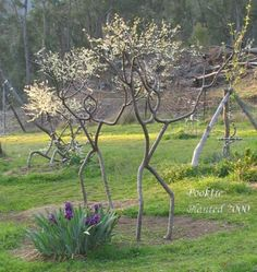"Saatchi Art Artist Peter Cook And Becky Northey; , ""People Tree"" #art"