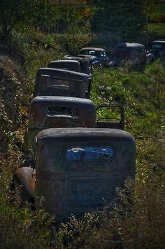Automobile graveyard. This makes you wonder what happened. These vehicles are in a row like they were on a road, something drastic happened & everyone abandoned them.