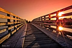 One of our favorite places in Halifax! Salt Marsh, Nova Scotia, Pathways, Trail, Sidewalk, Walking, Canada, Spaces, Travel