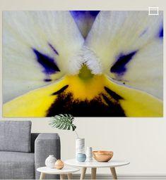Just a flower 2
