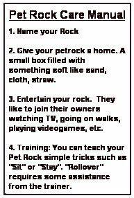 printable pet rock instruction manual