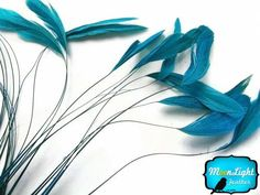 2.5  Inch Strip Mint Green Strung Natural Bleach And Dyed Coque Tails Feat...