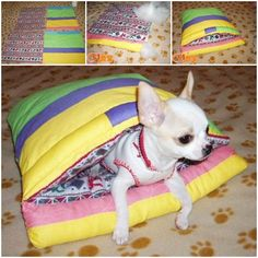 DIY Pet Sleeping Bag from Scraps - I'd have to make this muuuch bigger but Coco would definitely love this Pet Hammock, Crochet Dog Sweater, Diy Dog Bed, Girl And Dog, Diy Stuffed Animals, Pet Beds, Dog Accessories, Beautiful Dogs, Dog Toys