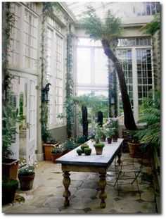 ..och odla vindruvor också.  The conservatory in Jasper Conran's country estate, Ven House |  Milborne Port, Somerset, England