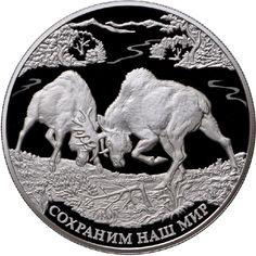 """25 rubli argento Russia 2015. Lotta due alci maschi;  lungo il bordo la scritta: """"Protect Our World""""."""