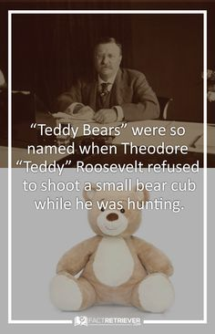 why teddy roosevelt was the best president