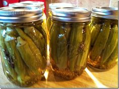 Pickled Okra - southern deliciousness !