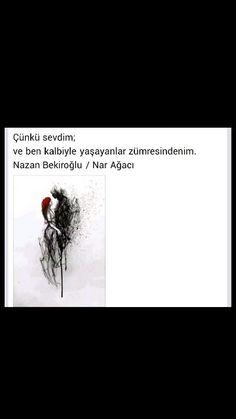 Çünkü sevdim Ve ben kalbiyle yaşayanlar zümresindenim Nazan Bekiroğlu