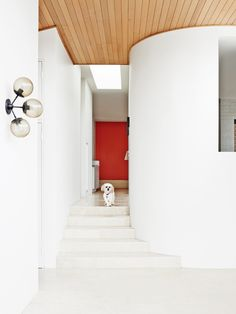 Residential Interior Design by Fiona Lynch Design Office, Hawthorn East House. Photography by Brooke Holm, styling by Marsha Golemac. Residential Interior Design, Office Interior Design, Interior Architecture, Hallway Inspiration, Living Room Inspiration, Design Inspiration, Melbourne, Interior Design Photography, House Photography