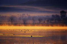 """""""Morning Mist"""" by landscape photographer Atif Saeed.  Dawn light at Uchhali Lake, Soan Sakaser, Salt Range, Pakistan."""