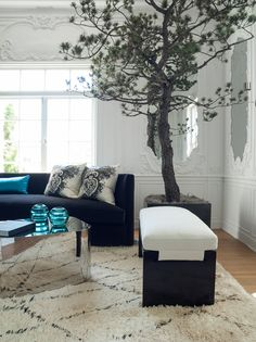 Living room designed by Matthew Leverone for San Francisco Decorator Showcase 2013. Love the indoor tree!