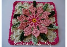 .Cactus Flower Granny...