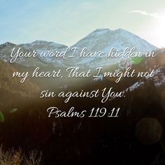 Psalms Your word I have hidden in my heart, That I might not sin against You. Psalm 119 11, Amplified Bible, New King James Version, Gods Love, Psalms, Words, Love Of God, Horse