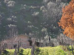 Land Amazing Nature, Colours, Mountains, Travel, Painting, Art, Art Background, Viajes, Painting Art